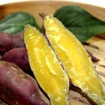 黃心蕃薯(斤)
