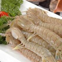 琵琶蝦 (斤)