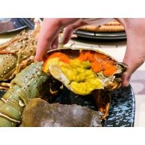 越南 膏蟹(斤)